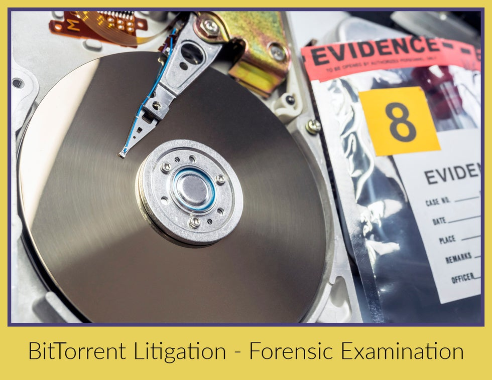 proving your innocence in a torrent download case