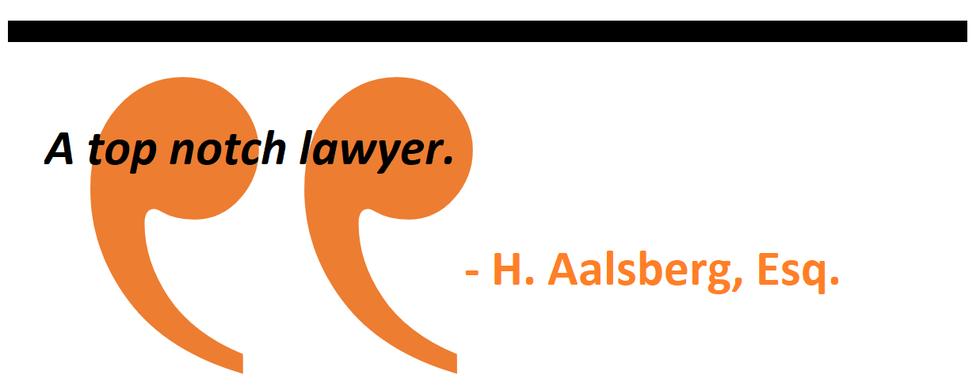A top notch lawyer.