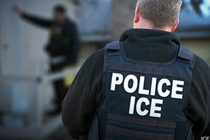 Immigration Consequences for Domestic Violence Conviction in Los Angeles