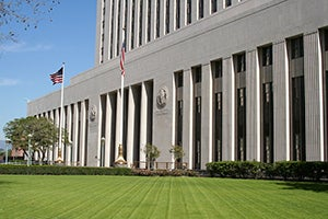 Plea Agreements in Federal Criminal Courts