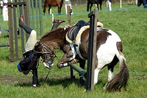 Horseback Riding Injury Lawyer in California