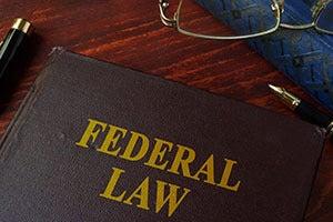 Federal Government Program Fraud Defense Attorney