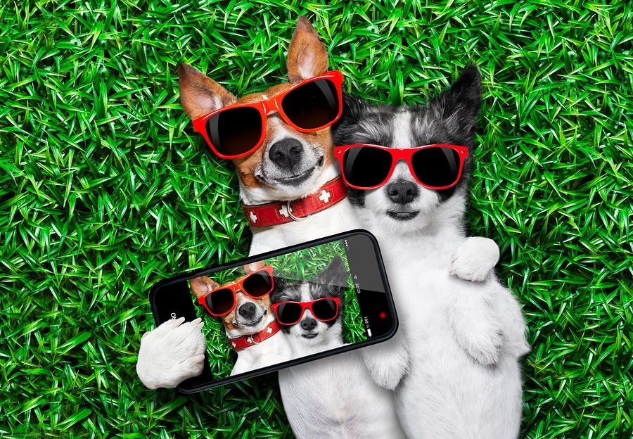 Selfies and Other Social Media in Divorce