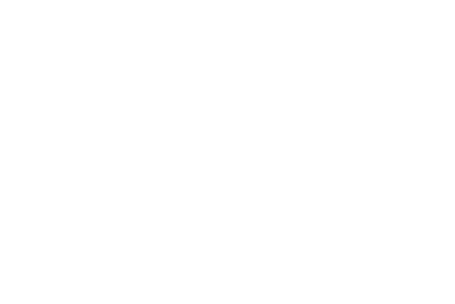 The Law Office of Michael Alarid, III