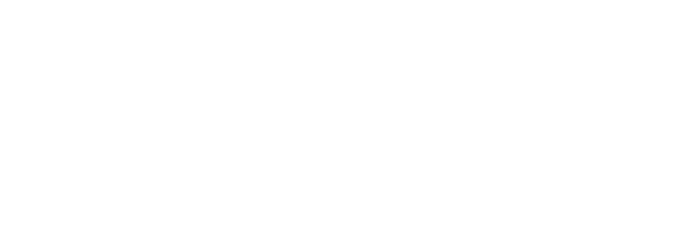 Schmidt, Sethi & Akmajian