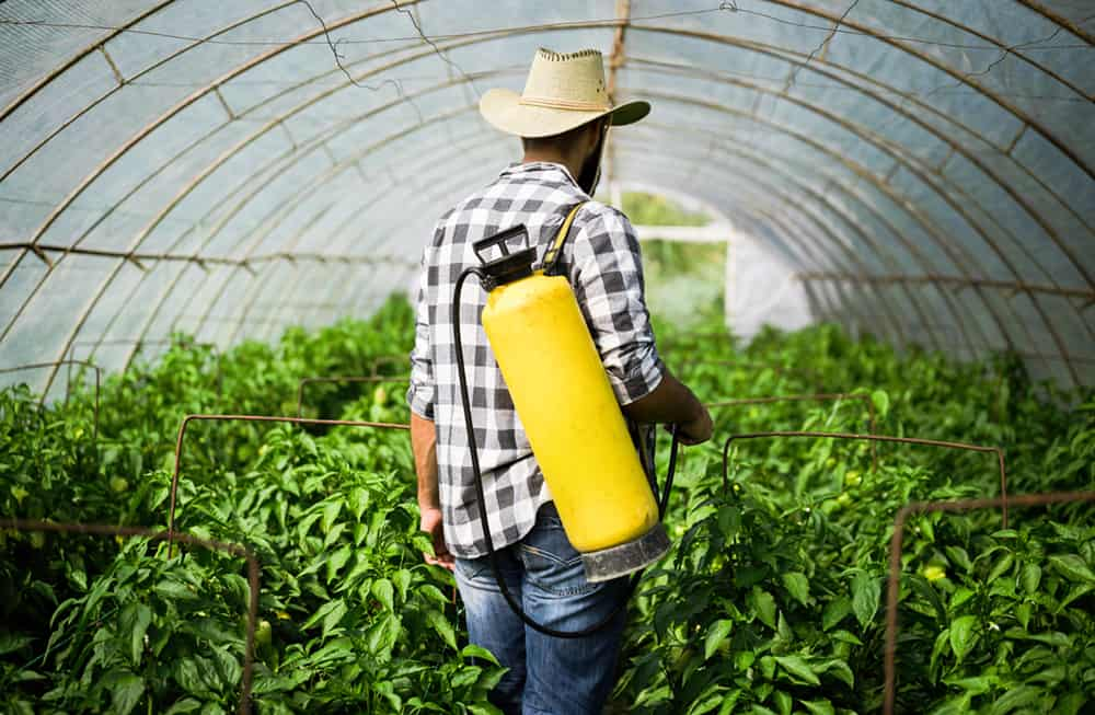 Cancers caused by Round Up Weed Killer