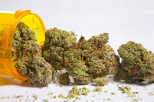 Marijuana Sales Law in California - Health and Safety Code 11360