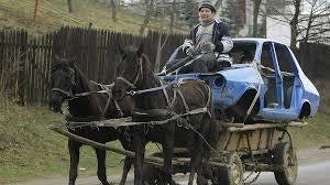 DUI On A Horse2