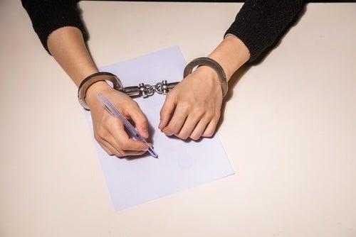 Idaho Criminal Lawyer